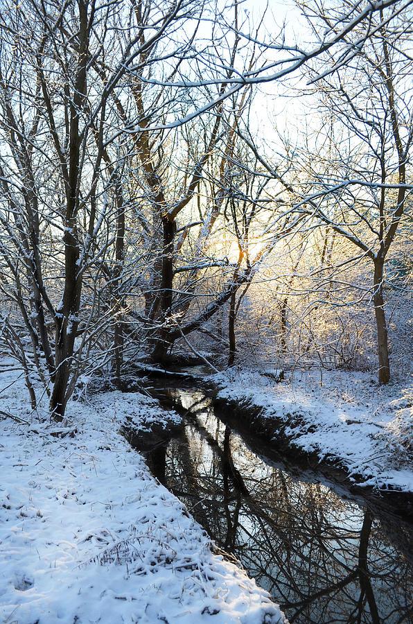 Winter Photograph - Wonderland by Alissa  Skoczelak