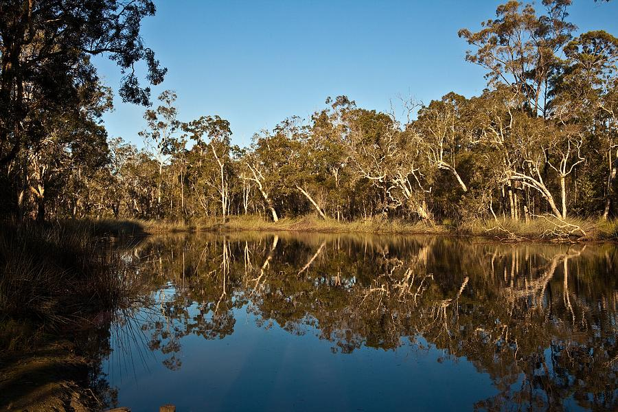 Australian Landscape Photograph - Wongi Water Holes by David Barringhaus