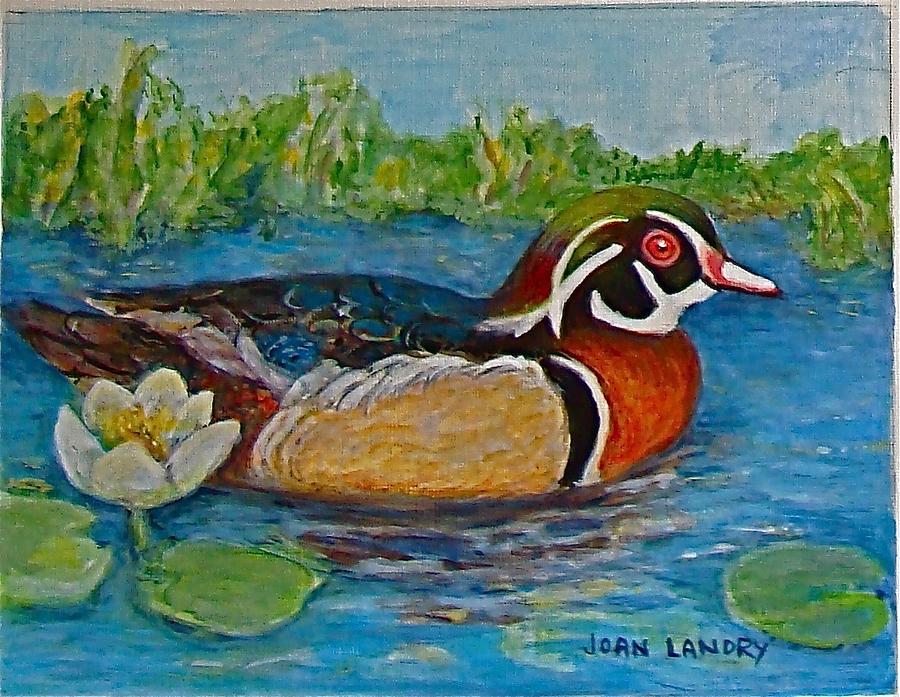 Water Fowl Painting - Wood Duck by Joan Landry