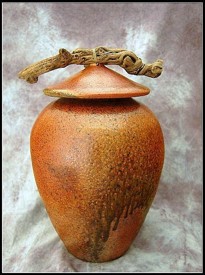 Pottery Ceramic Art - Wood Fired Large Lidded Pot With Driftwood by Maeva Collins