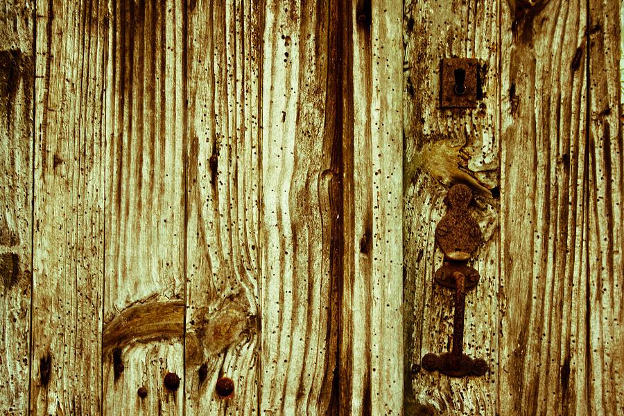 Texture Photograph - Wood Grain by Georgia Fowler
