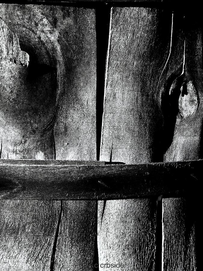 Wood Photograph - Wooden Corset  by Chris Berry