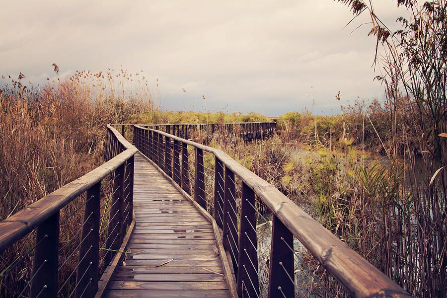 Horizontal Photograph - Wooden Path On The Lake by Copyright Anna Nemoy(Xaomena)