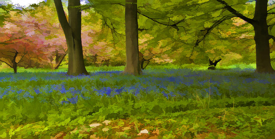 Scenery Painting - Woodland Watercolour by Trevor Kersley