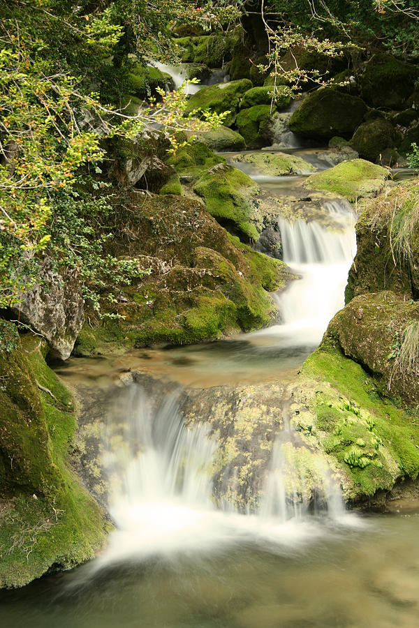 Waterfall Photograph - Woodland Waterfall by Victoria Hillman