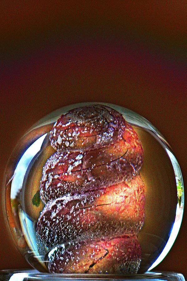 Avantgarde Photograph - World In A Glassball 01 by Li   van Saathoff