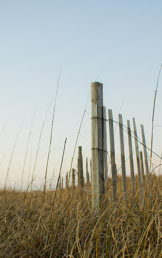 Beach Photograph - Worn Fence by Matthew Trudeau