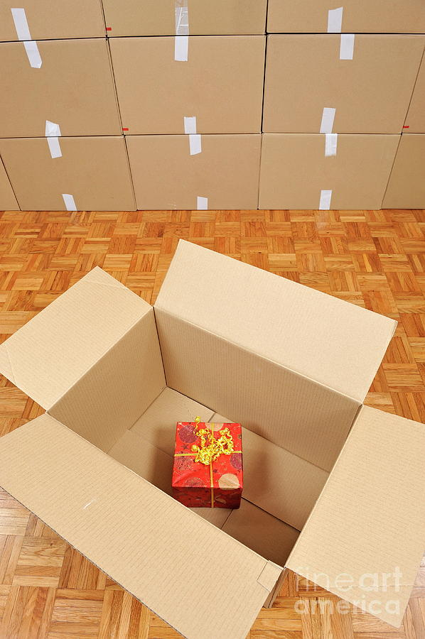 Surprise Photograph - Wrapped Gift Box Inside Cardboard Box by Sami Sarkis