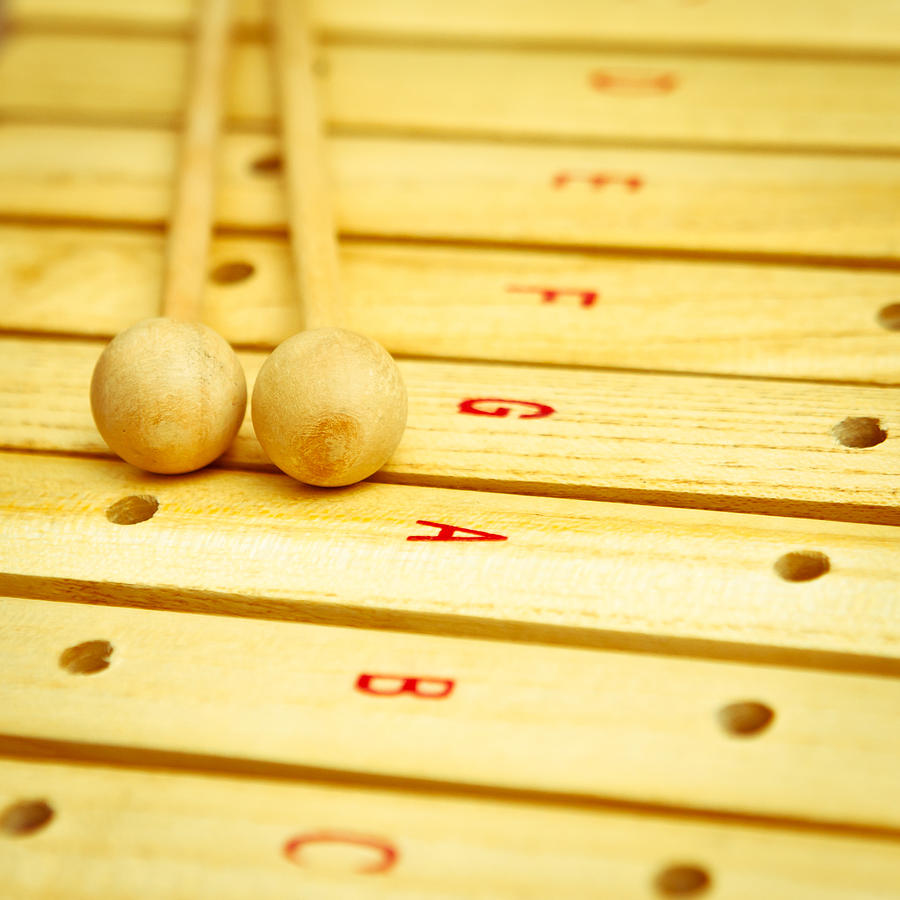 Beaters Photograph - Xylophone by Tom Gowanlock
