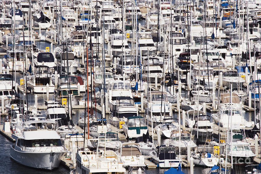 Anchored Photograph - Yacht Marina by Jeremy Woodhouse