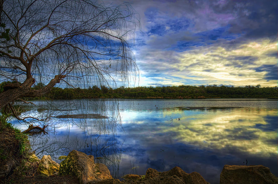 Background Photograph - Yanchep by Imagevixen Photography