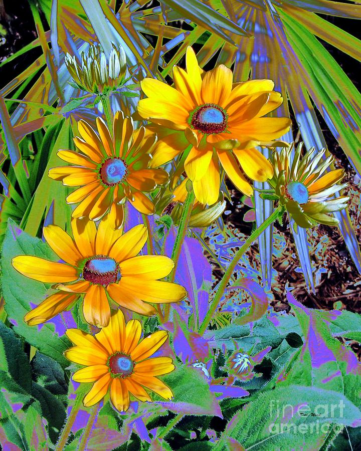 Flowers Digital Art - Yellow Daisies by Doris Wood