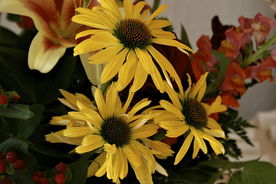 Still Life Photograph - Yellow Daisies by Richard Gregurich