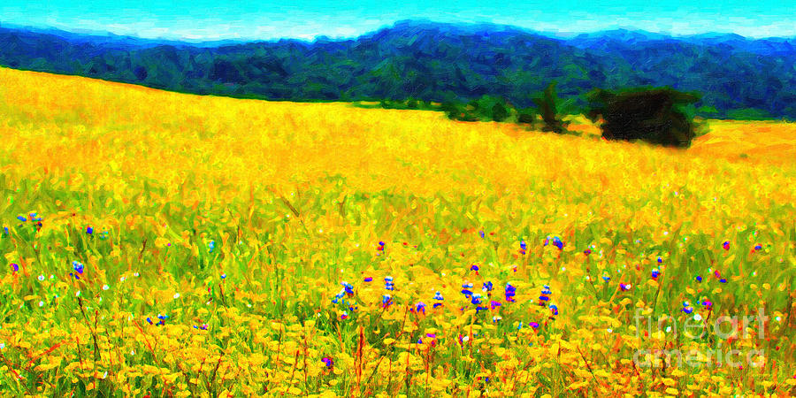 Landscape Photograph - Yellow Hills . Long Cut by Wingsdomain Art and Photography