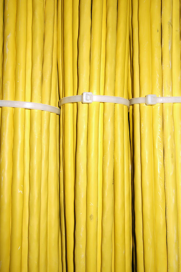 Yellow Photograph - Yellow Network Cables by Matthias Hauser