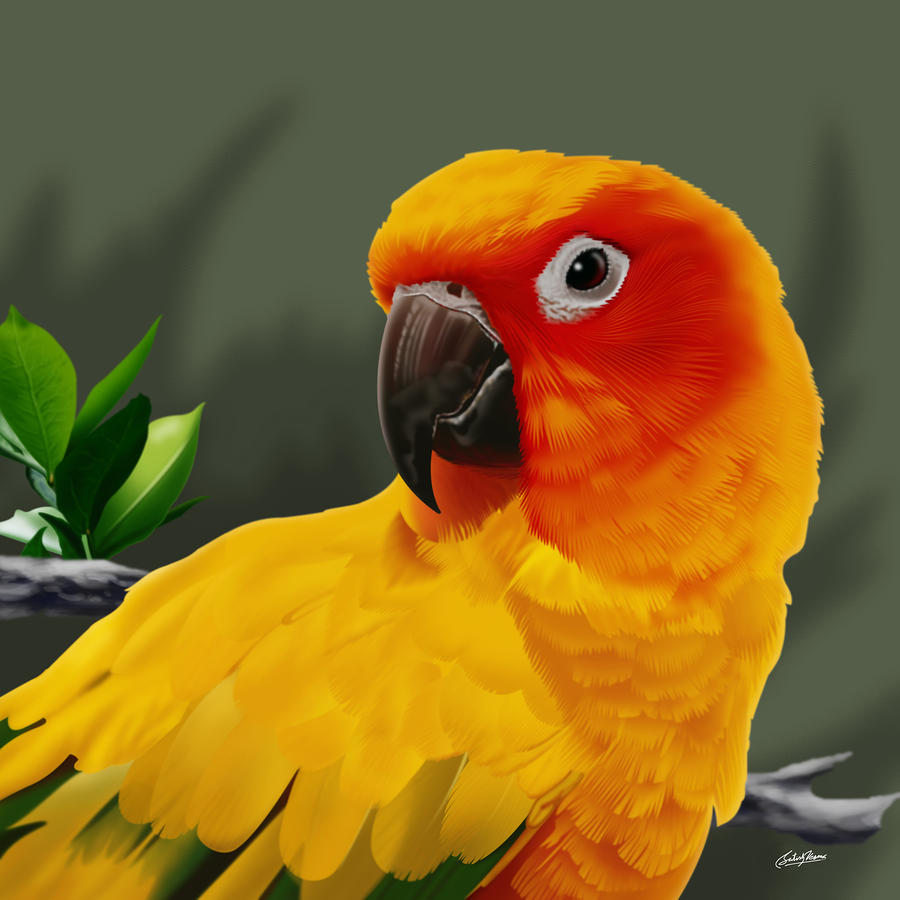 Yellow Red Parrot Mixed Media by Satish Verma