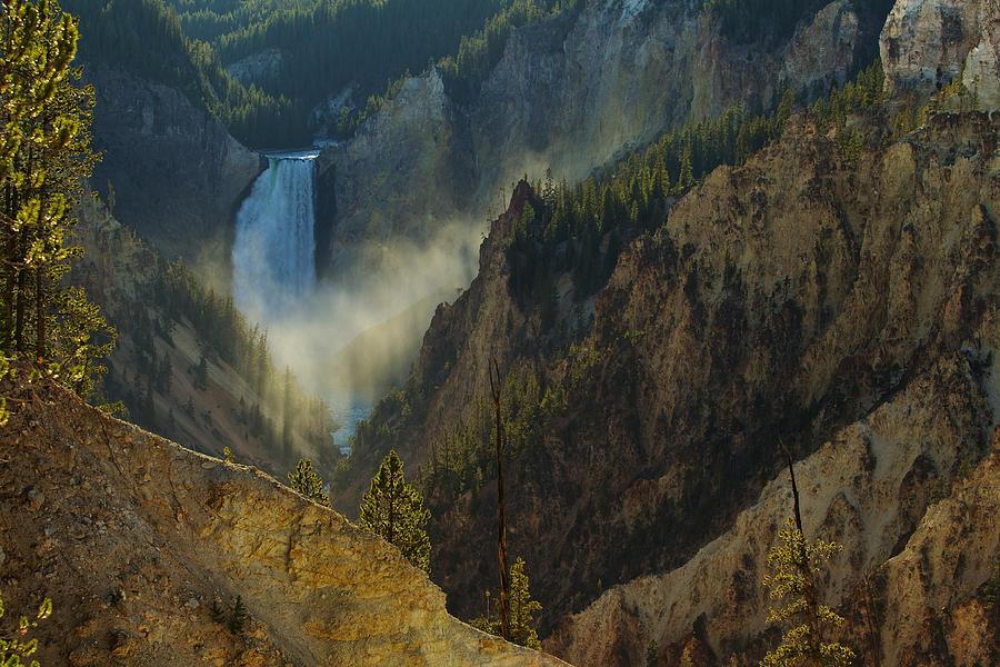 Yellowstone Photograph - Yellowstone Lower Falls by Johan Elzenga