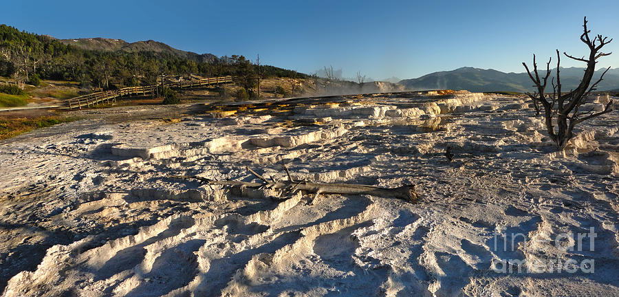 Yellowstone Photograph - Yellowstone National Park - Minerva Terrace - 07 by Gregory Dyer