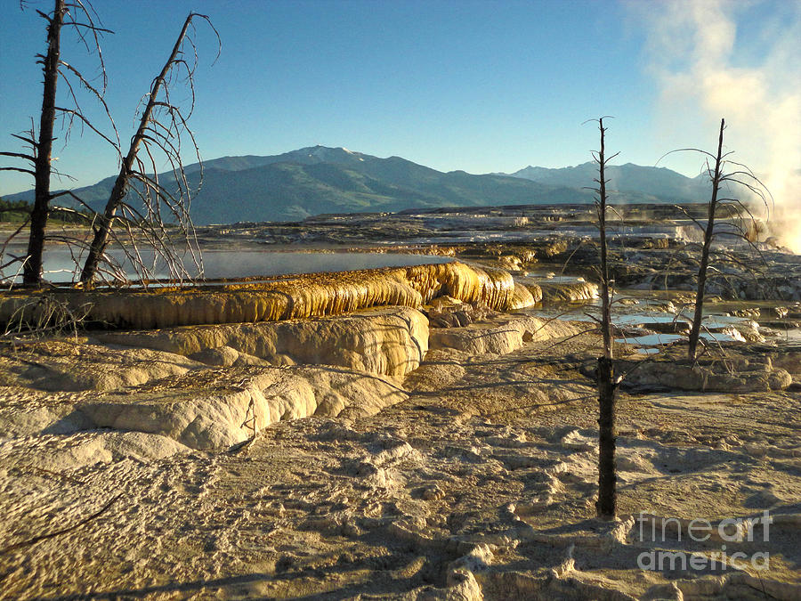 Yellowstone Photograph - Yellowstone National Park - Minerva Terrace - 10 by Gregory Dyer