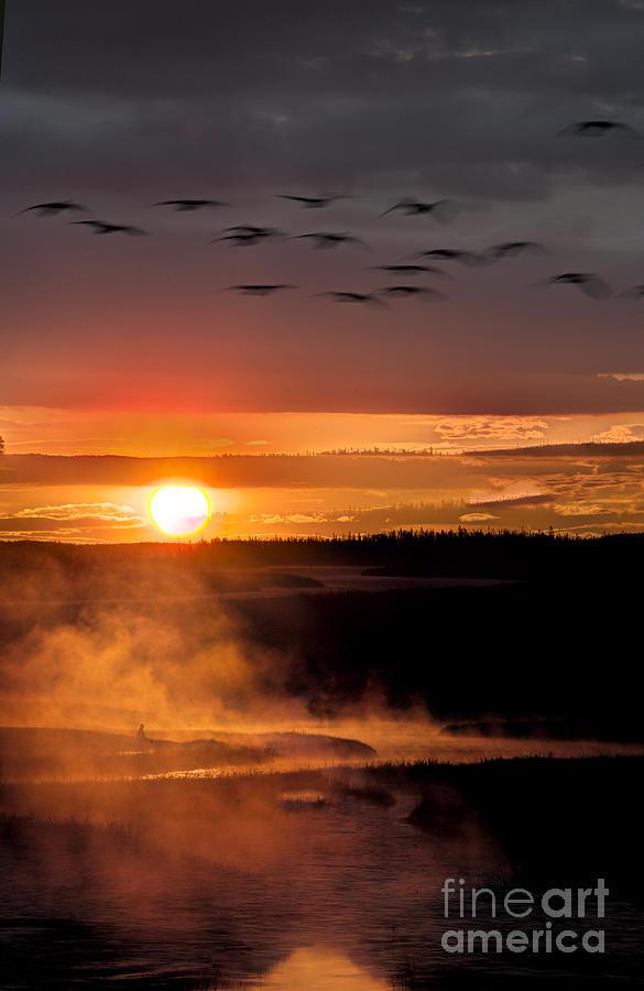 Yellowstone Sunrise Photograph by Eli Horowitz