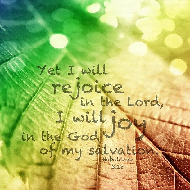 Love Photograph - yet I Will Rejoice In The Lord, I by Traci Beeson
