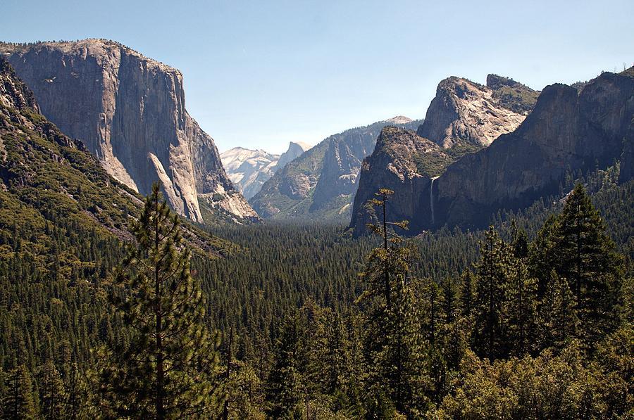 California Photograph - Yosemite by Tina Karle