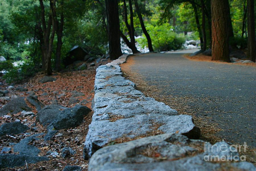 Park Photograph - Yosemite Walk Way by Henrik Lehnerer