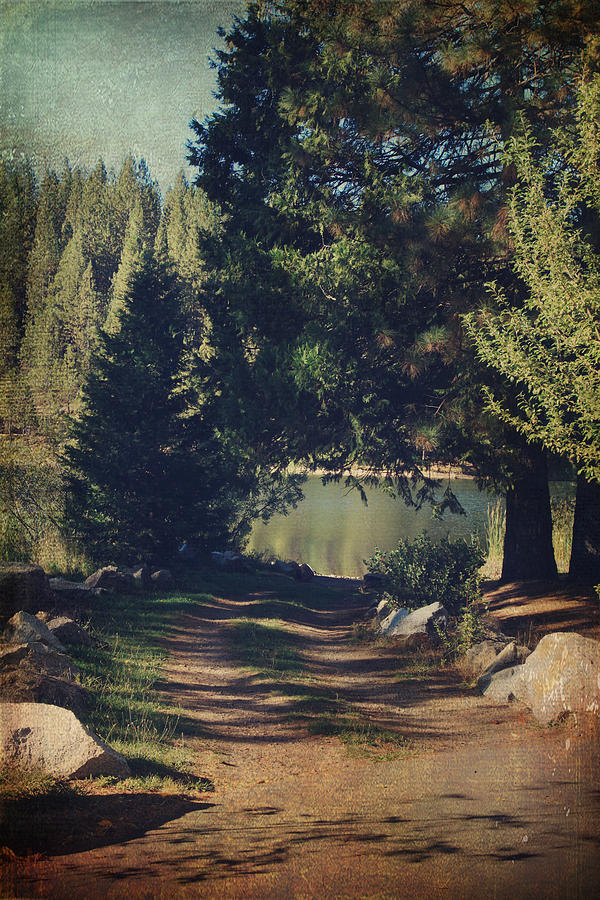 White Pines Lake Photograph - Youll Never Understand by Laurie Search