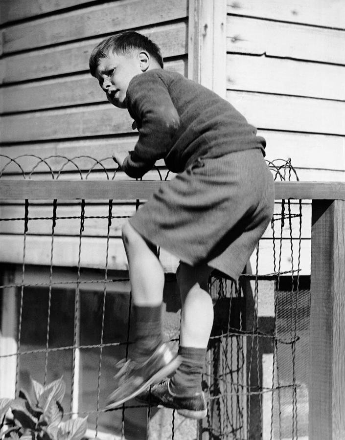 Child Photograph - Young Boy Climbing Fence by George Marks
