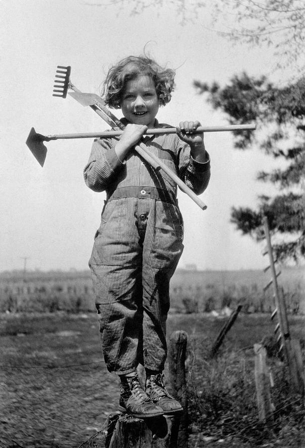 6-7 Years Photograph - Young Gardener by Henry Guttmann