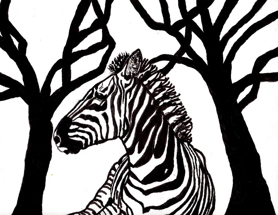 Zebra In Black And White Painting By Connie Valasco