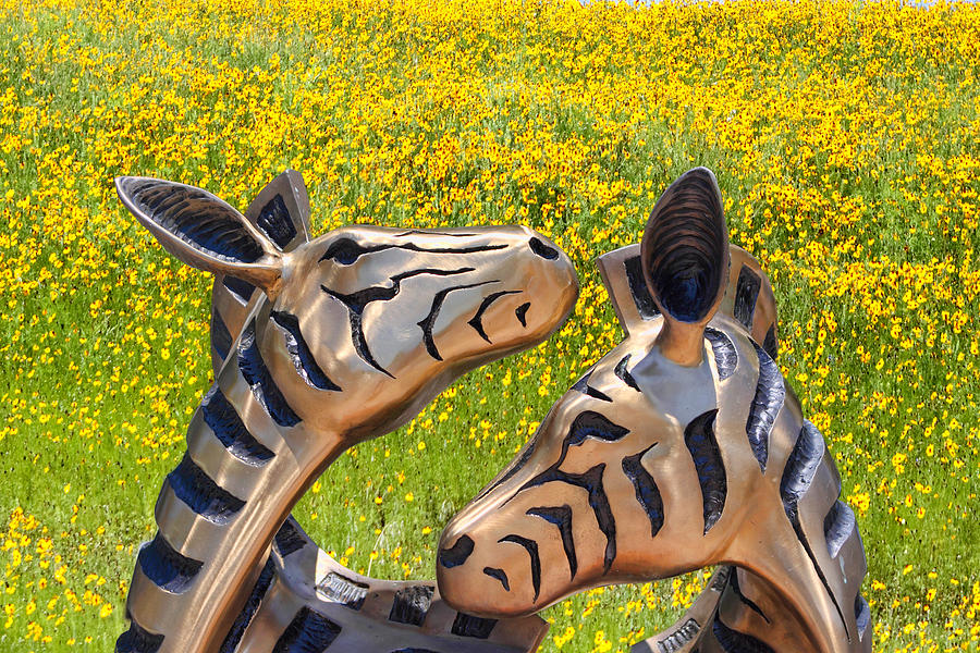 Sculpture Photograph - Zebra Sculptured Heads In Wildflowers by Linda Phelps