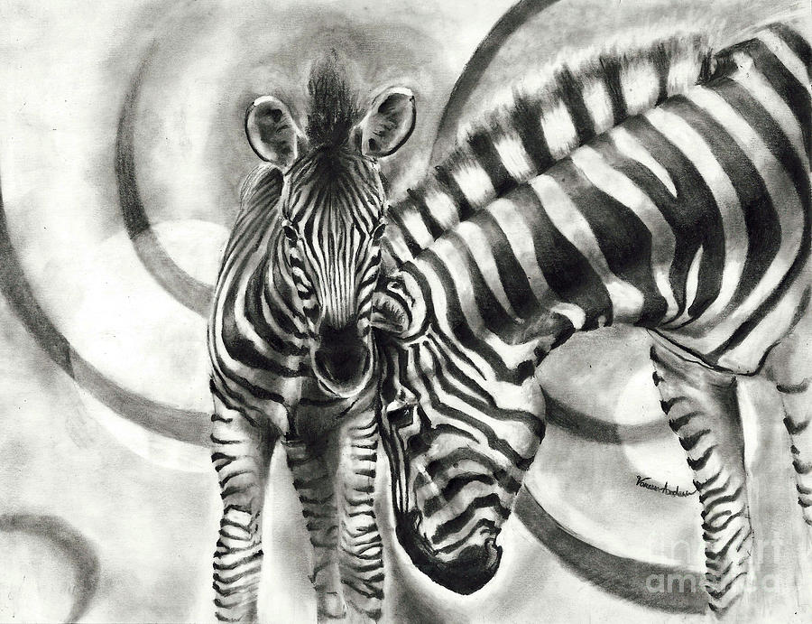 Zebras Drawing by Vanessa Anderson