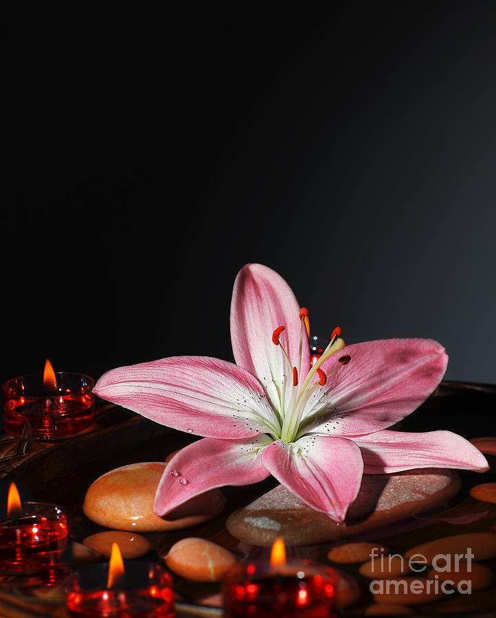 Still Life Photograph - Zen Atmosphere At Spa Salon by Anna Om