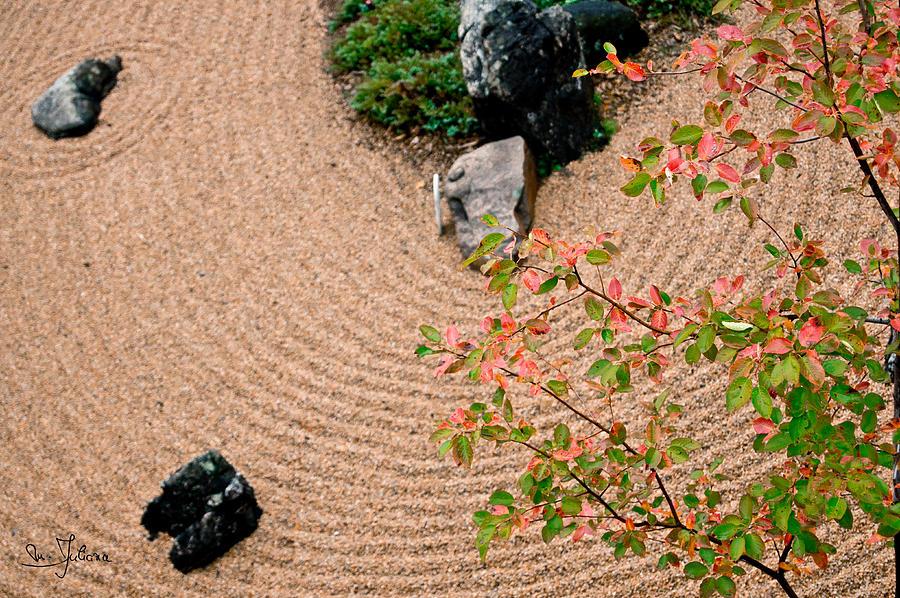 Fall Photograph - Zen Buddhist Meditation Garden No.1 by Iuliana Pacso