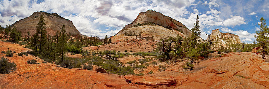 Zion Photograph - Zion Checkerboard Mesa And Hoodoos by Gregory Scott