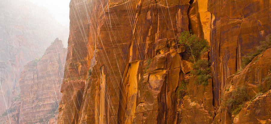 Sandstone Photograph - Zion Storm by Adam Pender