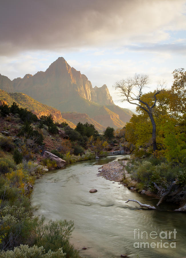 National Park Photograph - Zion View by Idaho Scenic Images Linda Lantzy