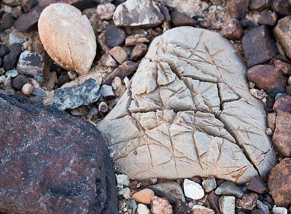 Jean Noren - Death Valley Rock
