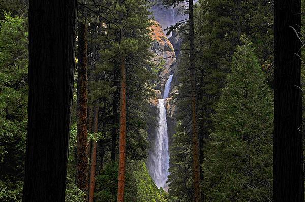 Lynn Bauer - Lower Yosemite Falls 2