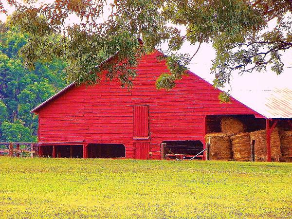 Gale H Rogers  - Red Barn