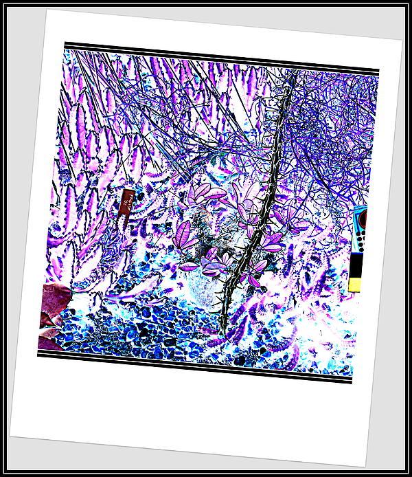 Anand Swaroop Manchiraju - Color Abstraction