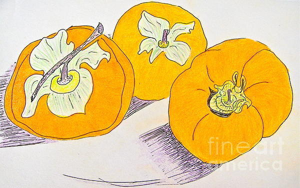 Christine Chase Cooper - 3 Persimmons