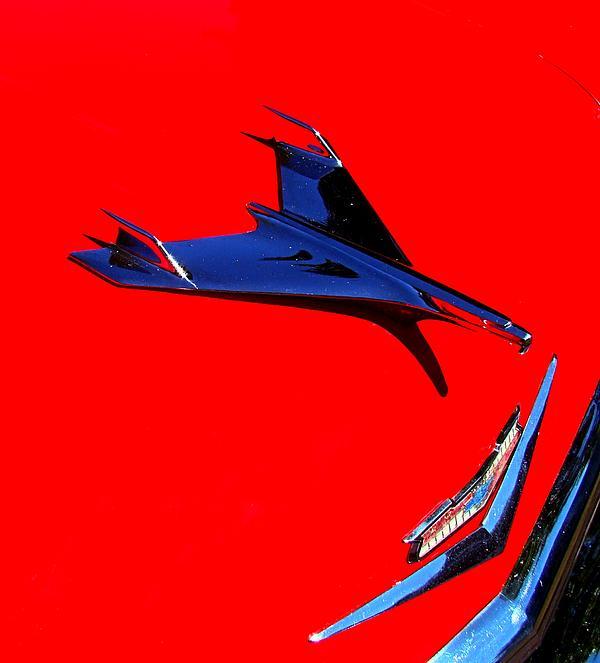 Nick Kloepping - 56 Belair Wings