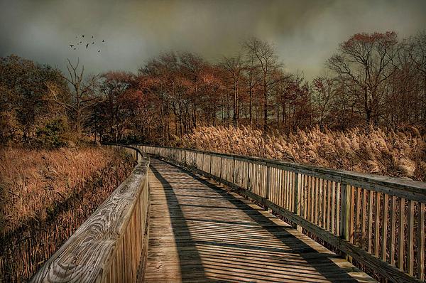 Robin-Lee Vieira - A Long Stroll