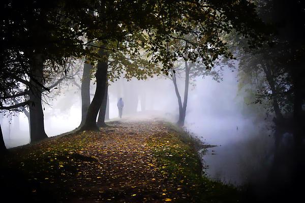 Steve Buckenberger - A Stroll in the Clouds
