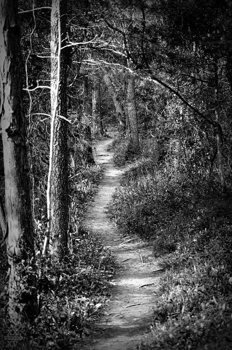 Russ Perdieu - Along The Trail