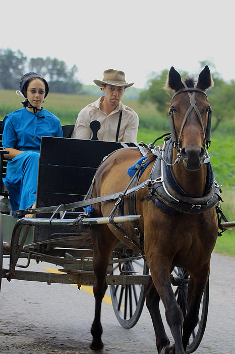 Dennis Pintoski - Amish Buggy Ride