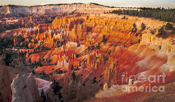 Robert Bales - Amphitheater At Bryce Canyon