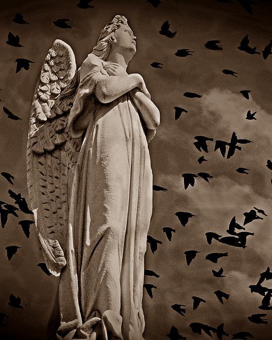 David Dehner - Angel of Stone S